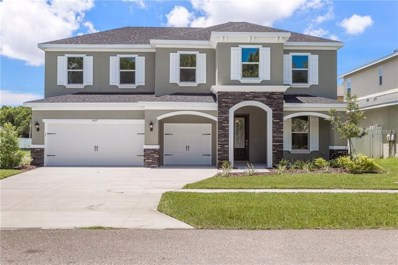 3420 Channelside Court, Safety Harbor, FL 34695 - #: U8023360