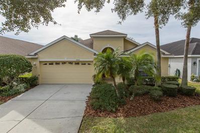 18821 Maisons Drive, Lutz, FL 33558 - #: U8027645
