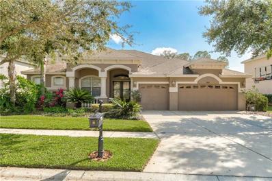 6614 Thornton Palms Drive, Tampa, FL 33647 - #: U8035521