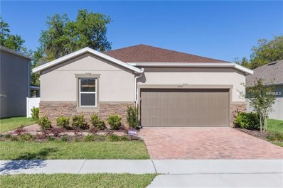 3205 Macintosh Road, Land O Lakes, FL 34639 - #: U8040034