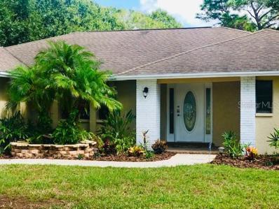 12510 TWIN BRANCH ACRES Road, Tampa, FL 33626 - #: U8062959