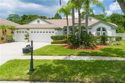 12419 BRISTOL COMMONS Circle, Tampa, FL 33626 - #: U8088410