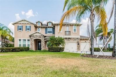 17917 BRAMSHOT Place, Lutz, FL 33559 - #: U8125301
