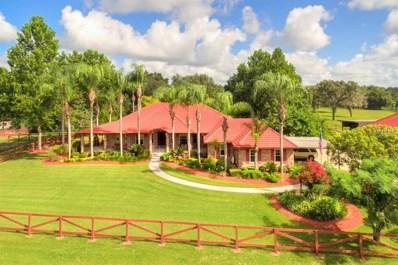 1350 Deerfoot Road, Deland, FL 32720 - #: V4719978