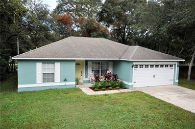 1637 13TH Street, Orange City, FL 32763 - #: V4904182