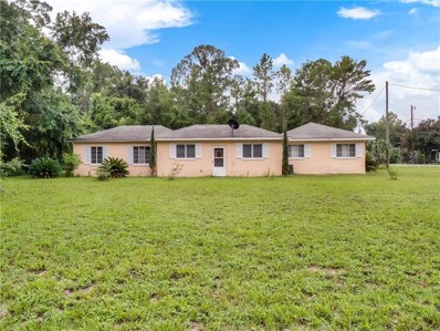 27700 County Road 42, Paisley, FL 32767 - #: V4909092