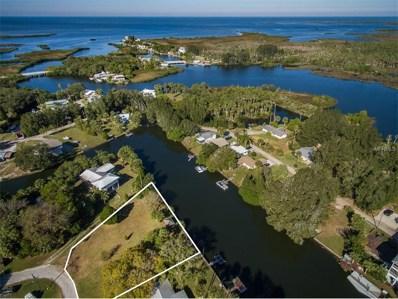 Kolb Place, Aripeka, FL 34679 - #: W7635498