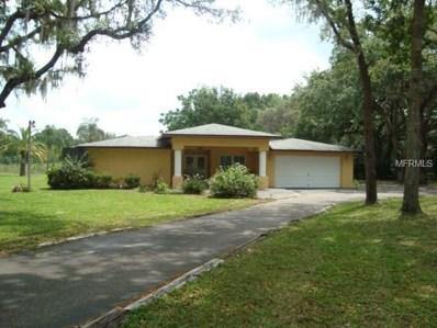 11280 Pine Forest Drive, New Port Richey, FL 34654 - #: W7800665