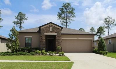 18596 Rococo Road, Spring Hill, FL 34610 - #: W7802660