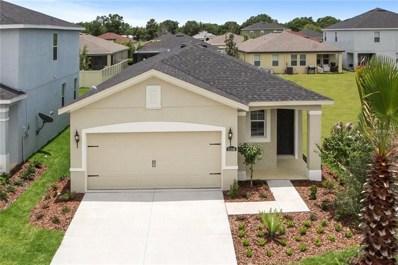 10383 Hawks Landing Drive, Land O Lakes, FL 34638 - #: W7805009