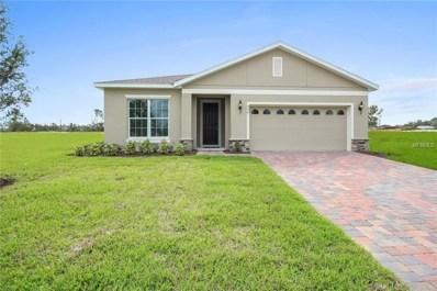 10176 Hawks Landing Drive, Land O Lakes, FL 34638 - #: W7805011