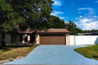 11230 White Oak Lane, Port Richey, FL 34668 - #: W7805514