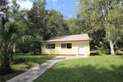 313 Lemon, Brooksville, FL 34601 - #: W7805534