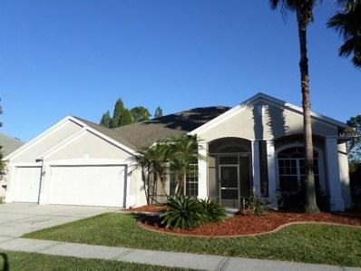 5234 Silver Charm Terrace, Wesley Chapel, FL 33544 - #: W7806402