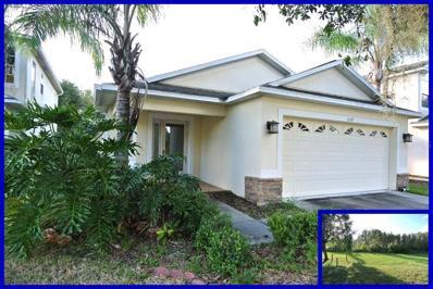 3137 Whitley Bay Court, Land O Lakes, FL 34638 - #: W7806926