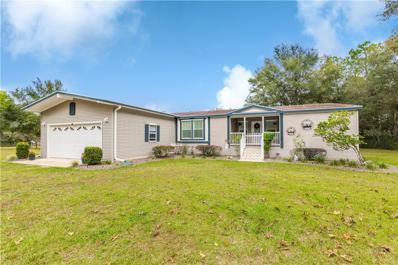 12492 Cyrano Avenue, Brooksville, FL 34601 - #: W7807439