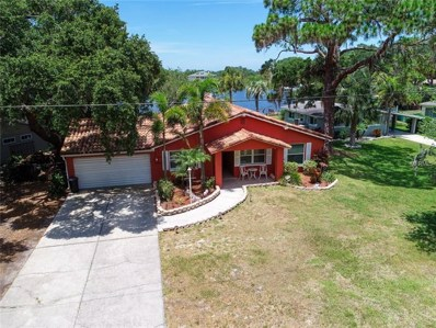 7051 Morningstar Lane, New Port Richey, FL 34652 - #: W7813051