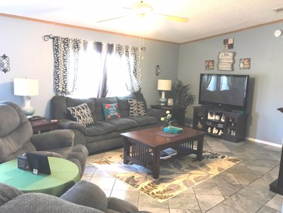 460 SE 41ST St, Keystone Heights, FL 32656 - #: 957598