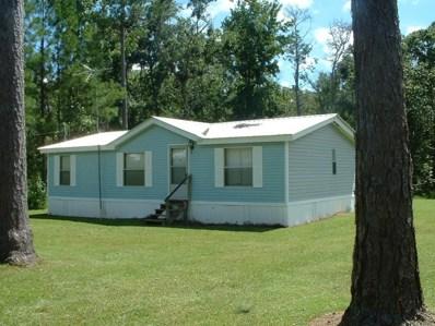738 Bryant Landing Rd, Wewahitchka, FL 32465 - #: 302602