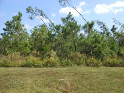10 Wide Water Cir, Wewahitchka, FL 32465 - #: 306066