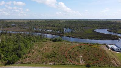 36 Wide Water Cir, Wewahitchka, FL 32465 - #: 307976
