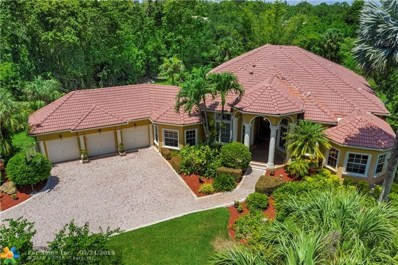 6603 NW 62nd Ter, Parkland, FL 33067 - #: F10177331