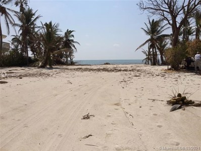 65820 Overseas Hwy Long Key, Other City - In The State Of >, FL 33001 - #: A10400166