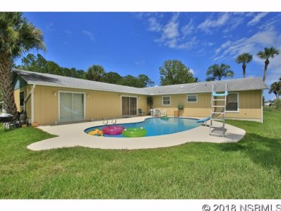 1806 Bayview Dr, New Smyrna Beach, FL 32168 - #: 1037387