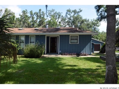 157 Cory Dr, Edgewater, FL 32141 - #: 1037628