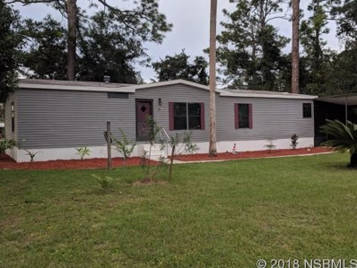1105 Millbrook Ave, Port Orange, FL 32127 - #: 1038311