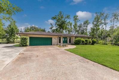 820 Lawhon, St Johns, FL 32259 - #: 179023