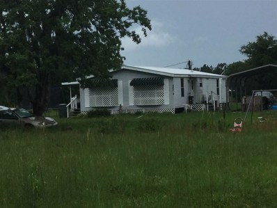 240 Dog Branch Road UNIT 1 and 2, East Palatka, FL 32131 - #: 179157