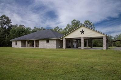1845 S County Road 13A, Elkton, FL 32033 - #: 182560