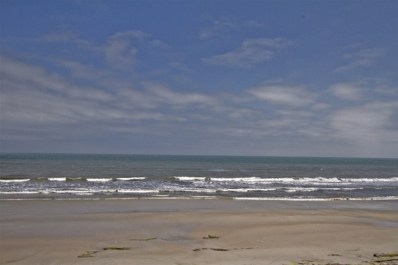 80 Surf Drive UNIT 714, Palm Coast, FL 32137 - #: 185694