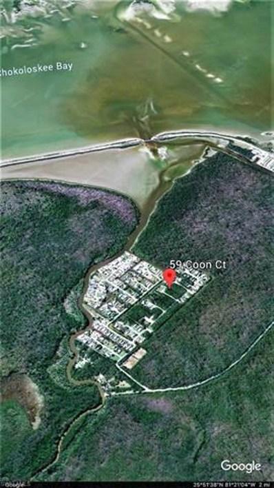 59 Coon Ct, Everglades City, FL 34139 - #: 218017762