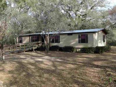 E Vann, Greenville, FL 32331 - #: 289974