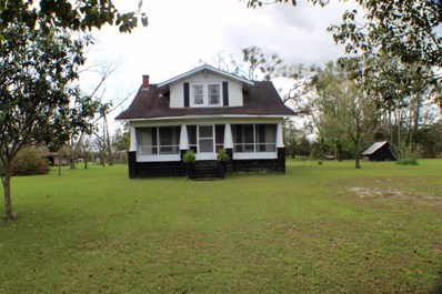 160 SE Carriage, Madison County, FL 32059 - #: 290931
