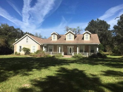 249 NW Live Oak Place, Lake City, FL 32055 - #: 299567
