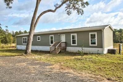 432 Ravencroft, Monticello, FL 32337 - #: 299795