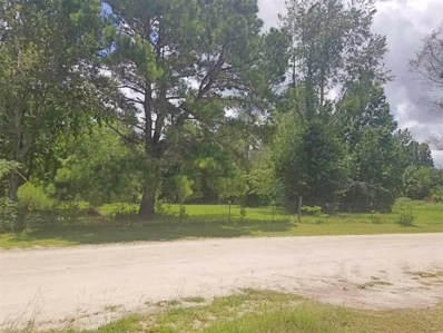 NW Vacant NW 60th Avenue Avenue, Jennings, FL 32053 - #: 319214