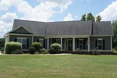 175 Lumpkin Road W, Leesburg, GA 31763 - #: 141171