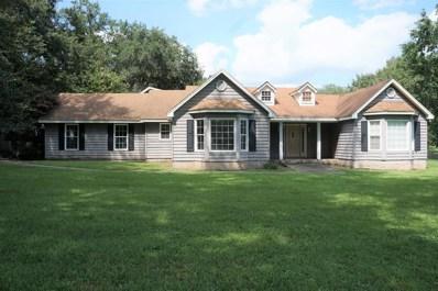 238 Kinchafoonee Creek Drive, Leesburg, GA 31763 - #: 141521