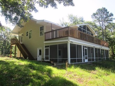 176 Swift Bend Road, Georgetown, GA 39854 - #: 143267