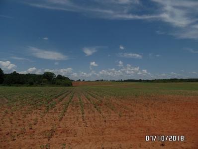 0 Jenkins Farm Road, Byromville, GA 31007 - #: 184005