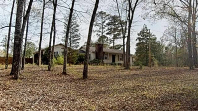 2970 Ray Frost House Road, Byron, GA 31008 - #: 192074