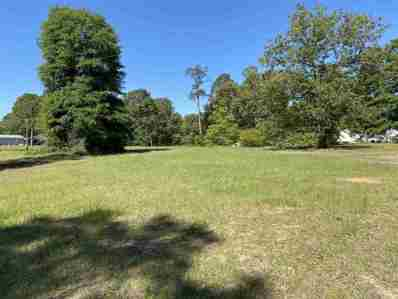 S State Route 49 Road, Andersonville, GA 31711 - #: 212883
