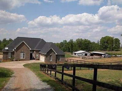 219 Brice Rd, Silver Creek, GA 30173 - #: 5971784