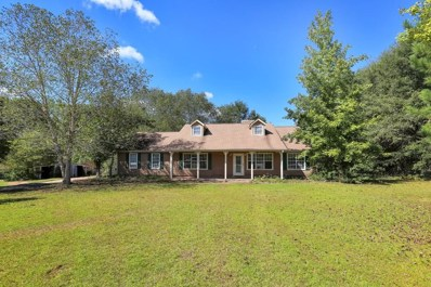 260 Creekside Way, Mcdonough, GA 30252 - #: 6083053