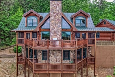 8 Owl Ridge Way, Jasper, GA 30143 - #: 6113682