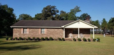 202 Breedlove Road, Bainbridge, GA 39817 - #: 6114993